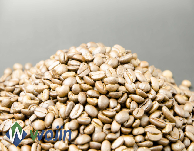 one way degassing valve coffee camel feed